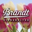 Brandt Virágbolt - Auchan Soroksár
