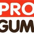 ProGumi Gumiszerviz