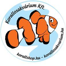 KorallosAkvárium Tengeri és Édesvízi Akvarisztikai Szaküzlet - Soroksár, Taling utca