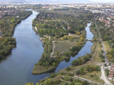 Molnár-sziget (forrás: Dunai Szigetek)