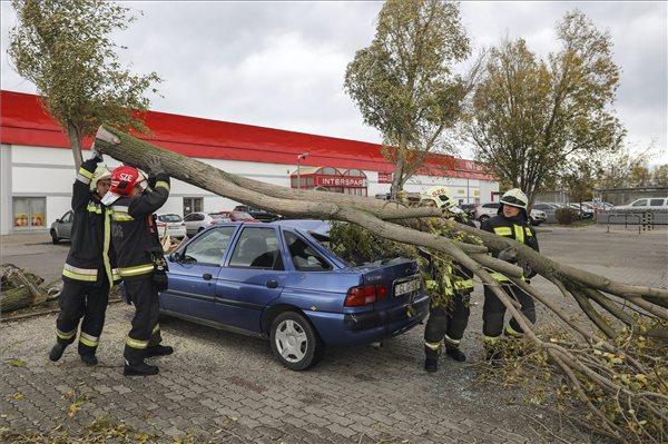 Fák dőltek autókra (fotó: Mohai Balázs - MTI)